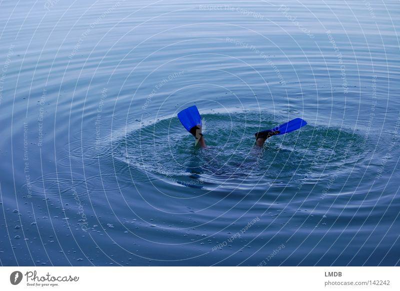 auf Tauchgang blau Wasser Ferien & Urlaub & Reisen springen See Wellen Schwimmen & Baden nass Kreis tauchen Erfrischung Schwimmhilfe Wassersport Kühlung einfarbig