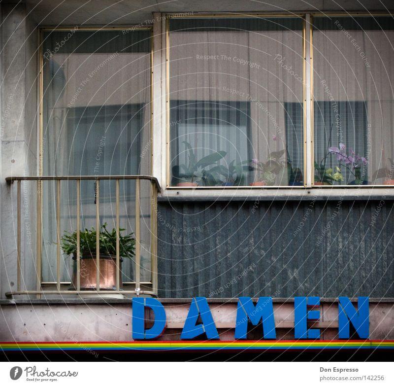 Tristesse-Cologne Stadt Haus Fenster Architektur Glas Fassade trist Schriftzeichen Buchstaben Dame Balkon Langeweile Fensterscheibe Regenbogen Ödland