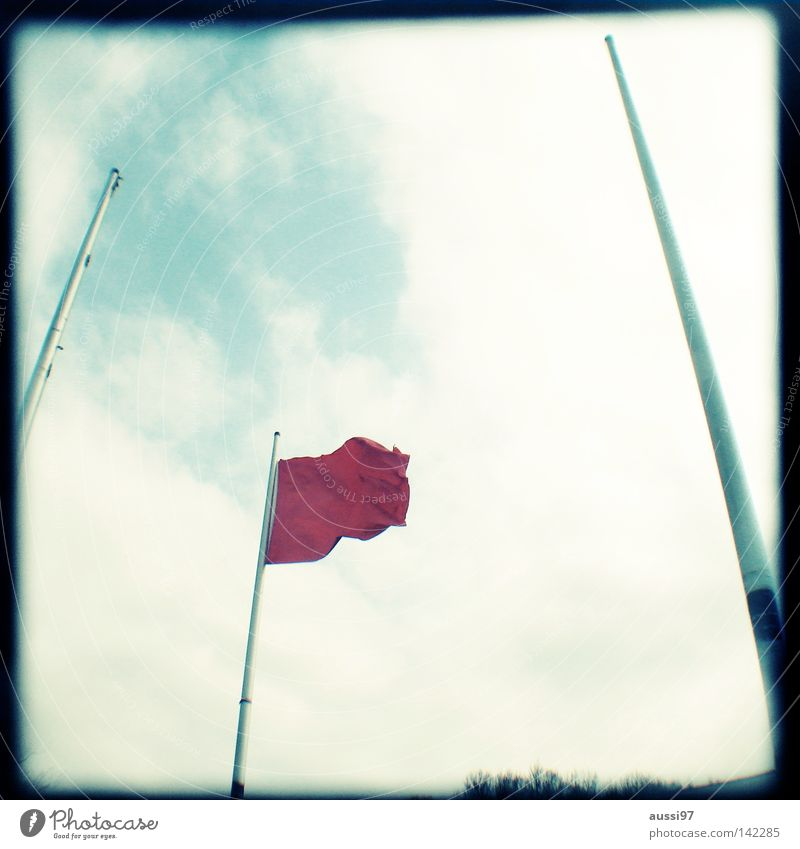 Flag day Fahne Beflaggung rot analog Sucher umrandet Rahmen Schilder & Markierungen Dekoration & Verzierung Mundgeruch Landesfahne Landesflagge Wind wehen