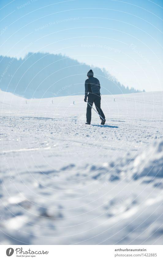 Langlaufen Mensch Natur Jugendliche Mann weiß Junger Mann Landschaft Winter Wald kalt Erwachsene Leben Bewegung Schnee Sport maskulin