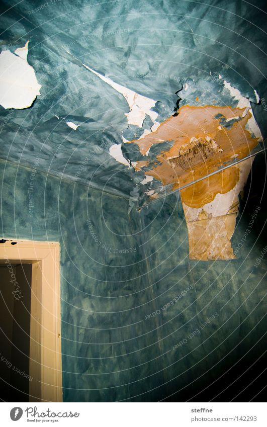 Nachmieter gesucht VI [Weimar 2008] alt Haus Einsamkeit Raum Wohnung Häusliches Leben Tapete verfallen schäbig Decke Renovieren Schlafzimmer Schimmelpilze