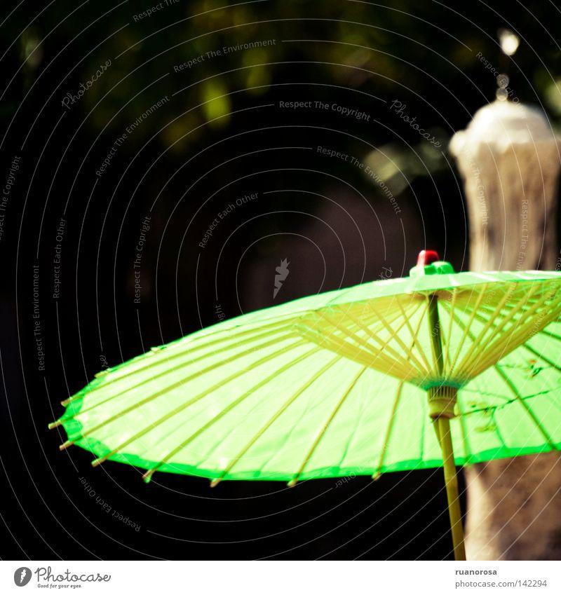 grün Farbe Sommer Farbstoff Graffiti Schilder & Markierungen Schutz Sicherheit Regenschirm Sonnenschirm Handwerk Schutzschild Versicherung Pestwurz