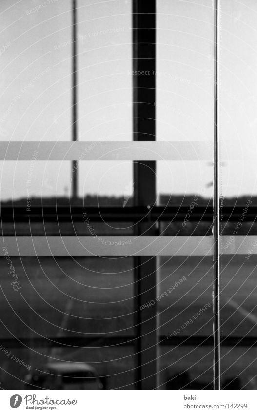 Geradelinien Linie Strukturen & Formen Streifen Flughafen KFZ Asphalt Schilder & Markierungen Straße Aussicht Fensterscheibe Glas Glasscheibe durchsichtig