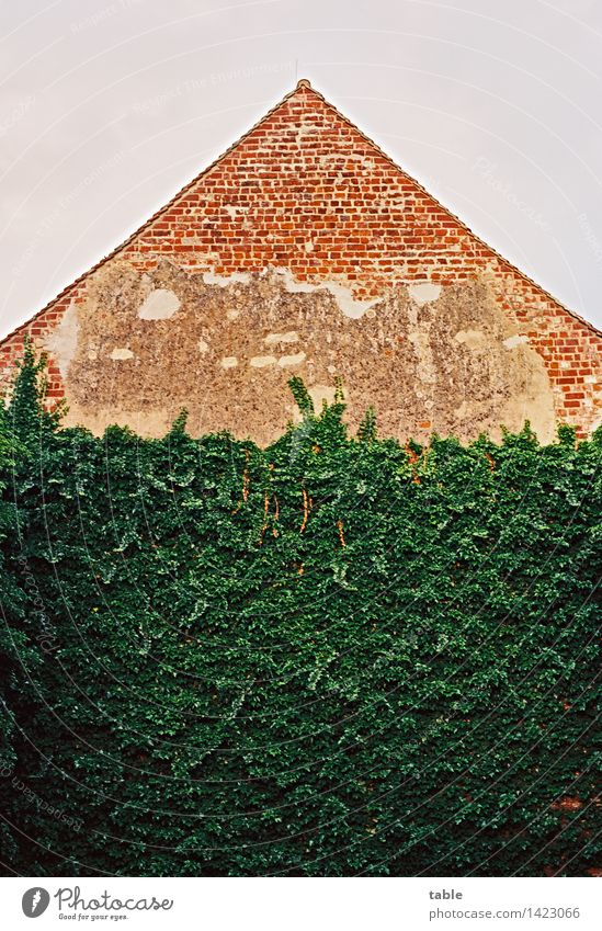 Giebelwand Himmel Natur Stadt alt Pflanze grün Sommer rot Haus Umwelt Wand Frühling Gebäude Mauer Zeit Stein
