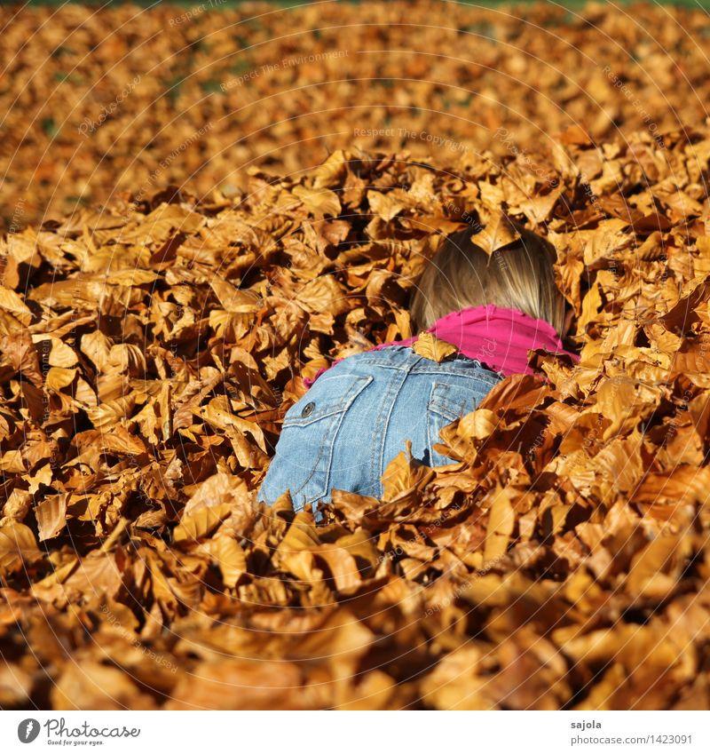 eintauchen in den herbst Mensch Kind Natur Blatt Freude Mädchen Umwelt Herbst feminin Spielen braun orange Park Schönes Wetter trocken Gesäß