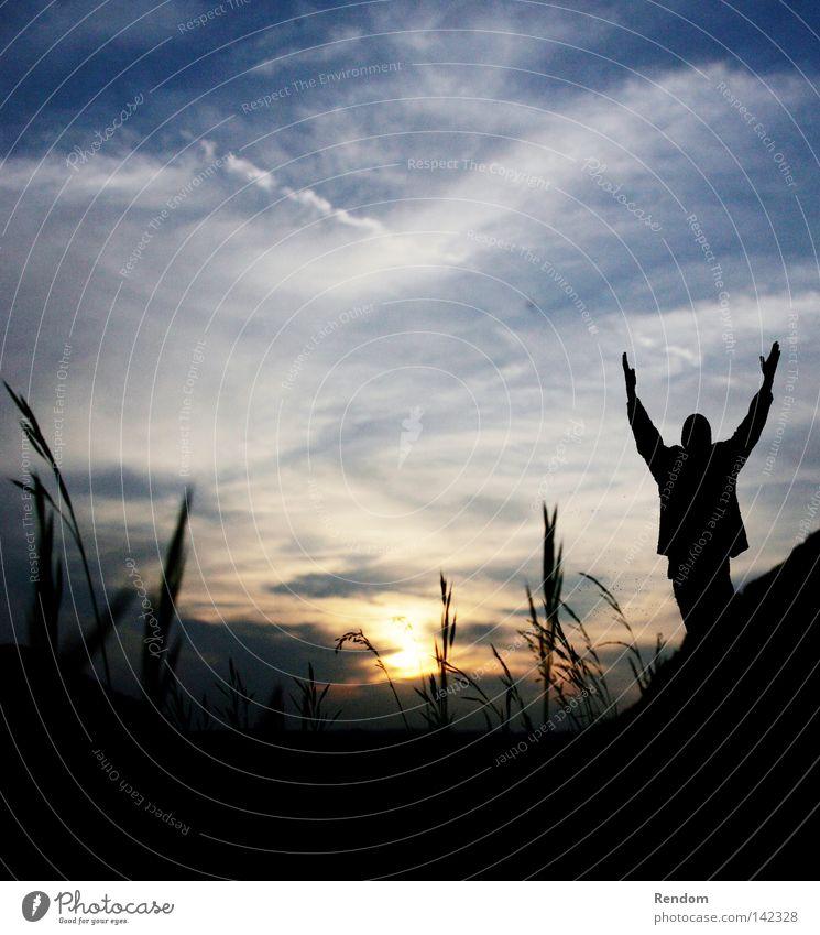 Morgengrauen Freude Glück schön Freiheit Sonne Feierabend Jugendliche Himmel Wolken Gras Wiese dunkel frei Stimmung Fröhlichkeit Lebensfreude Frühlingsgefühle