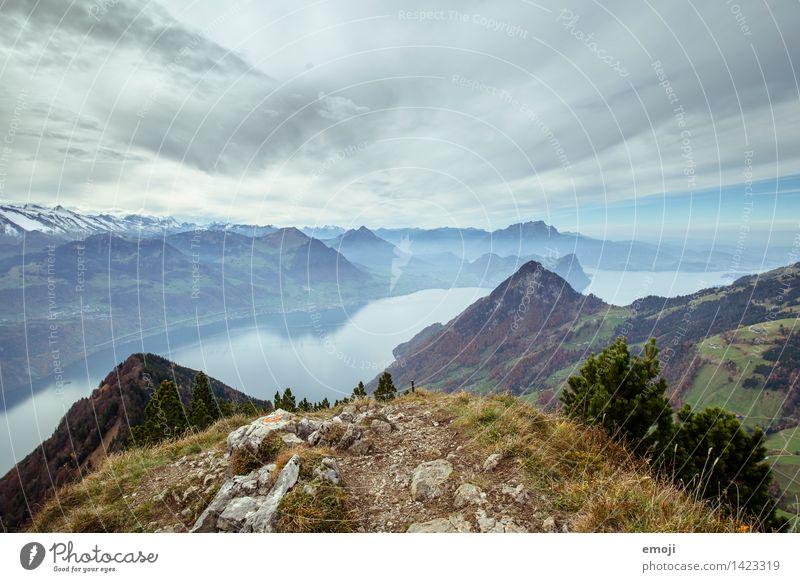 geschafft! Umwelt Natur Landschaft Herbst Alpen Berge u. Gebirge Gipfel See außergewöhnlich natürlich blau Schweiz Tourismus Wanderausflug Vierwaldstätter See
