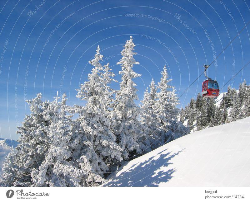 WinterWonderLand 1 Neuschnee Österreich Tanne Schnee Seilbahn Gondellift Schneelandschaft Schneedecke Bergwald Nadelwald Idylle typisch aufwärts Blauer Himmel