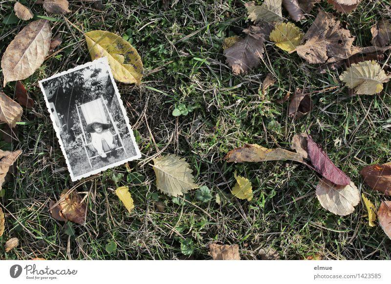 Es ist Herbst geworden (2) alt Einsamkeit Blatt Leben Traurigkeit Herbst Gefühle Senior Wiese Zeit träumen Kindheit Vergänglichkeit retro historisch Vergangenheit