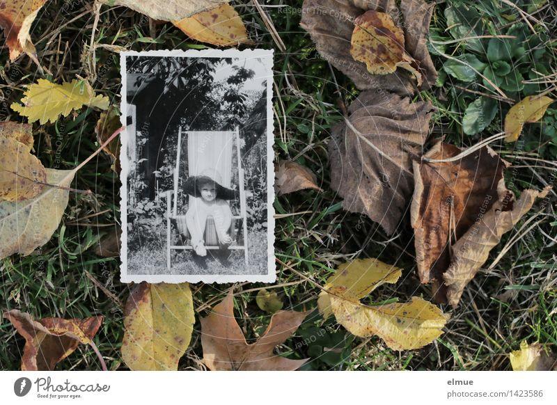Es ist Herbst geworden (1) alt Einsamkeit Blatt ruhig Ferne Traurigkeit Gefühle Senior Wiese Gras Zeit träumen Freizeit & Hobby Kindheit Fotografie