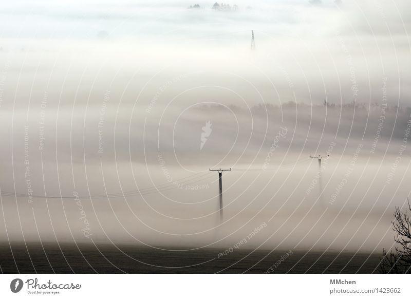 Über Land Natur Landschaft ruhig kalt Herbst grau Feld Nebel warten Elektrizität Kabel Verbindung verstecken Strommast Surrealismus Vernetzung
