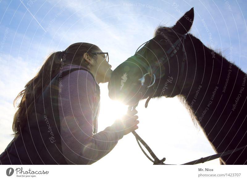 scheiß auf den prinzen ich nehm das pferd Freizeit & Hobby Reiten Sonne feminin Junge Frau Jugendliche Schönes Wetter langhaarig Küssen Vertrauen Pferd