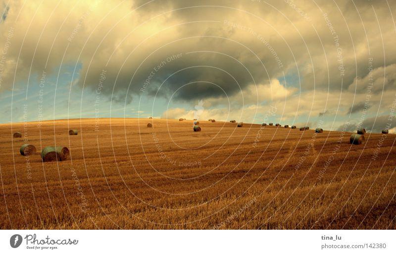Kornfeld II Getreide Ähren Gegenlicht Sonne Himmel Wolken Sommer Licht Physik Wärme Unschärfe Stroh Strohballen Heu Heuballen Ernte gold