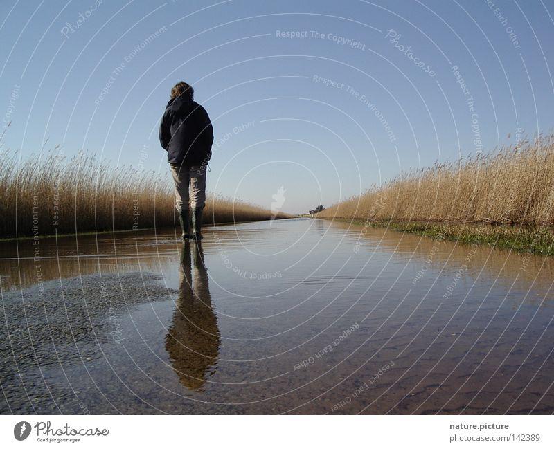 """Strasse """"Land-unter"""" Straße Wasser Pfütze wandern Stiefel Schilfrohr Rømø Nordsee Überschwemmung Hochwasser Frau Landunter"""