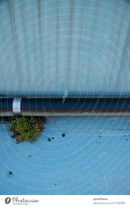 Beckenrand II Sommer Schwimmbad Pflanze Wasser Sträucher Metall alt trocken blau grau schwarz Eisenrohr Folie Freibad Loch bewachsen verfallen Rohrschelle