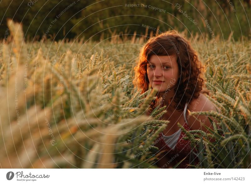 Kornmädchen2 Natur schön Sommer Farbe Erholung Sand Feld Horizont Erde Getreide Frau verstecken Locken Abenddämmerung Kornfeld Weizen