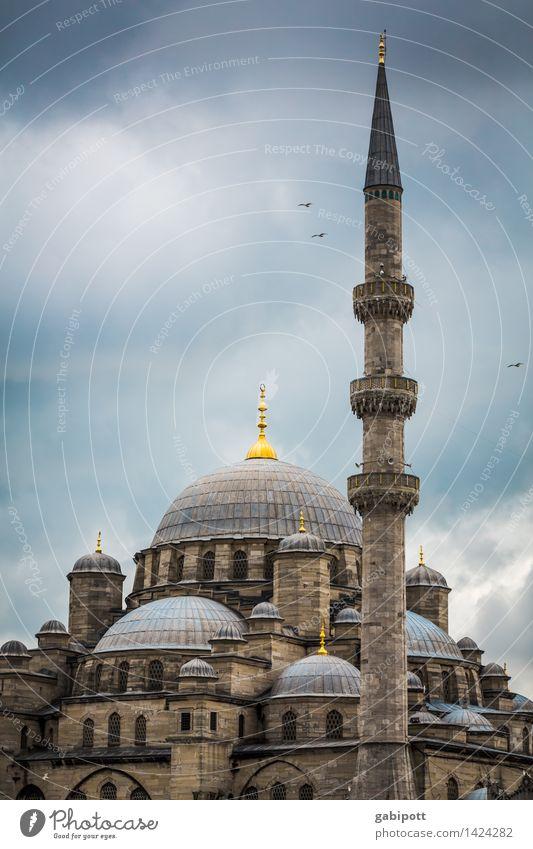 Glauben und glauben lassen Ferien & Urlaub & Reisen Tourismus Ausflug Ferne Sightseeing Städtereise Moschee Blaue Moschee Istanbul Türkei Turm Bauwerk Gebäude