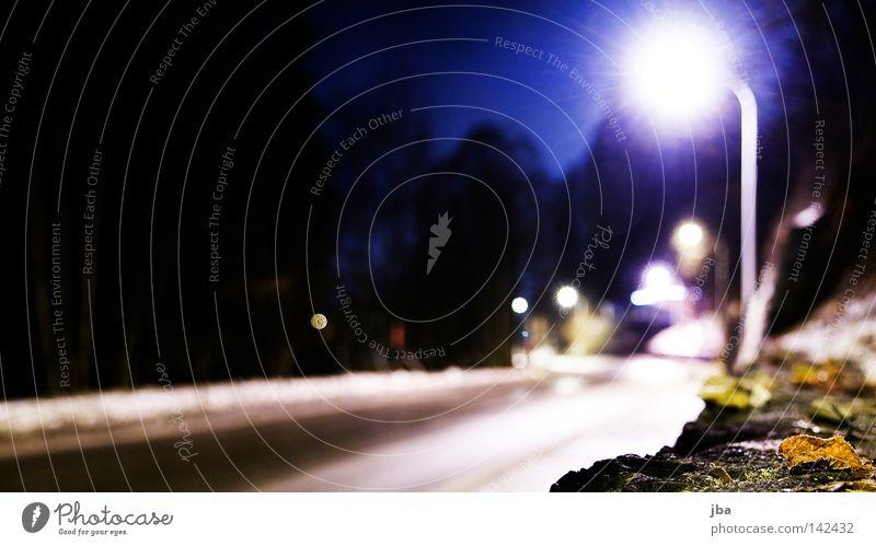 wohin? Straße Wege & Pfade leer spät Abend Laterne Lampe Straßenbeleuchtung Licht Mauer Steinmauer gefroren kalt Winter Baum Straßenrand Bürgersteig