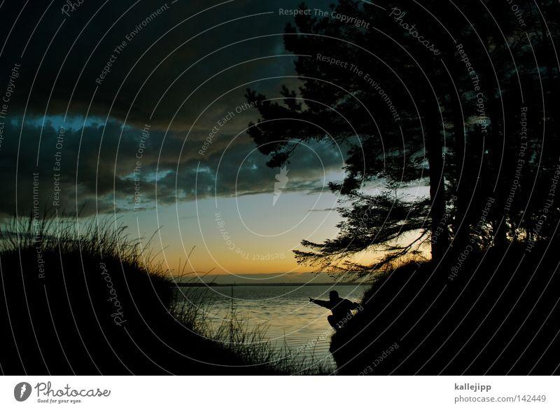 grosse breite Mensch Himmel Mann Natur Wasser Baum Pflanze Ferien & Urlaub & Reisen Meer Sommer Strand schwarz Ferne Wald Leben Landschaft