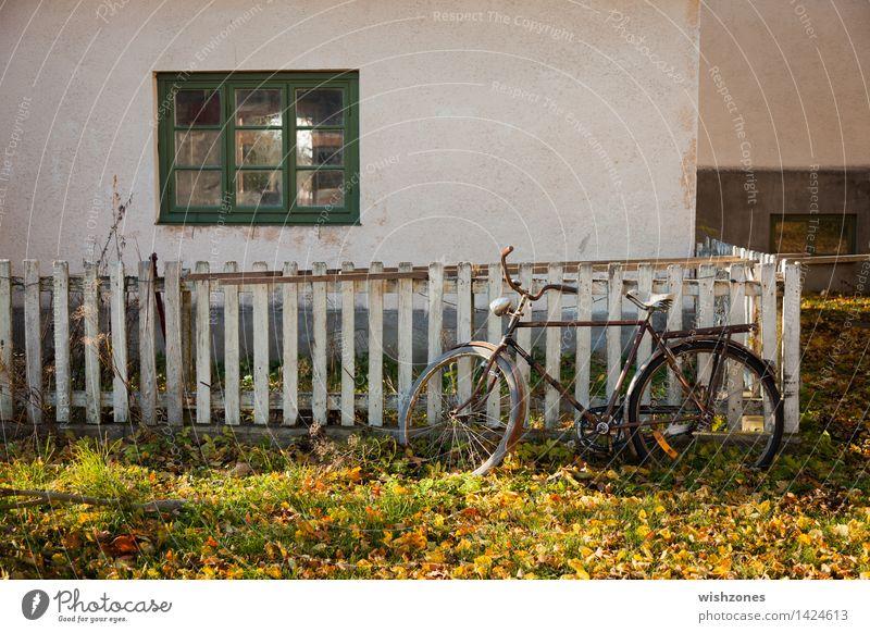 End of bicycle season alt grün weiß Erholung ruhig Fenster gelb Wand Herbst Gras Stil Mauer Holz Zeit Fassade Metall