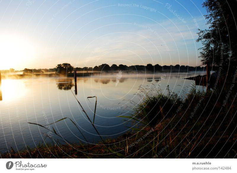 morning mood Natur Wasser schön grün Sommer Einsamkeit Gras Landschaft Stimmung Deutschland Umwelt ästhetisch Fluss Sträucher Brandenburg Spiegel