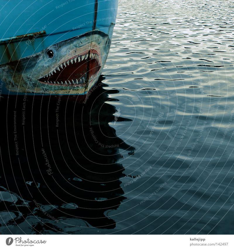 mackie messer Fischerboot Wasserfahrzeug Oberkörper Schiffsbug Haifisch Schnauze Maul Monster Gebiss Fressen Wellen Liegeplatz maritim Schifffahrt Hochsee