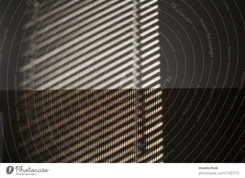 Herzchen & Karos Sommer dunkel Fenster Wand Linie Hintergrundbild Ordnung trist Frieden Aussicht parallel Geometrie Glätte Neigung schick graphisch