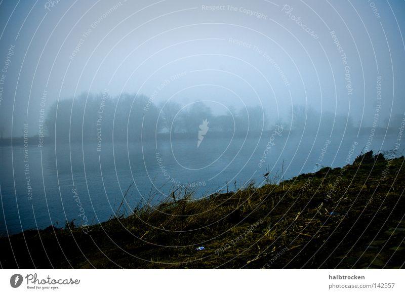 Hoffnungslose Fälle II Landschaft Meer Winter Fluss Bach Wasser Ufer Blick Bäume Nebel blau