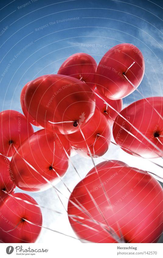 Love Balloons rot Herz Zuneigung leicht Schweben blau Himmel Gas fliegen frei Freiheit hoch aufwärts tief Geborgenheit Ring Kirche balloon heaven red Luftballon