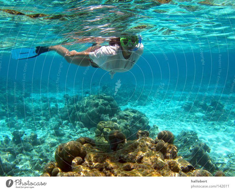 Malediven Water 19 Wasser Meer Unterwasseraufnahme tauchen Wassersport Riff Schnorcheln