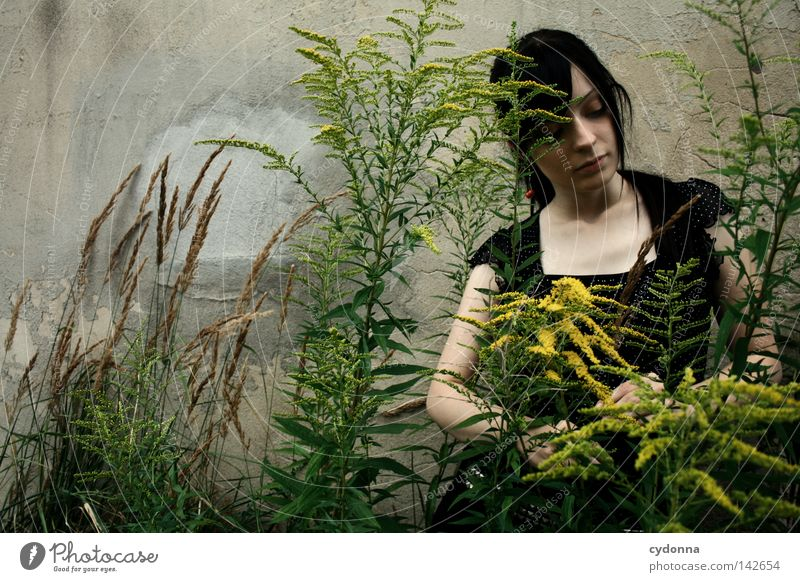 Verträumt [Weimar08] Frau Mensch Natur alt schön Pflanze Einsamkeit feminin Leben dunkel Wand Gefühle Gras Blüte Stil Denken