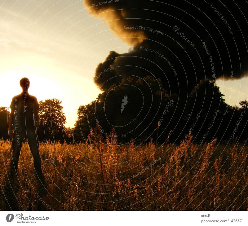 der brandstifter Kerl Mann Jugendliche Feld Wiese schwarz Wolken Rauch Schatten blenden Blendeneffekt verdunkeln Baum unheimlich Angst Panik Himmel Mensch