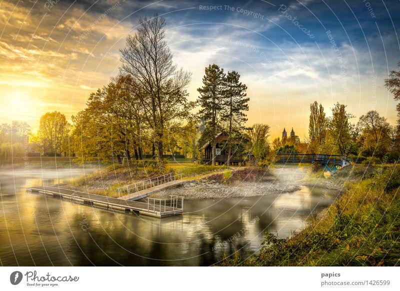 Herbst am Adolf-Mittag-See Städtereise Insel Wassersport Natur Landschaft Himmel Wolken Sonnenlicht Schönes Wetter Baum Garten Park Wiese Seeufer Teich