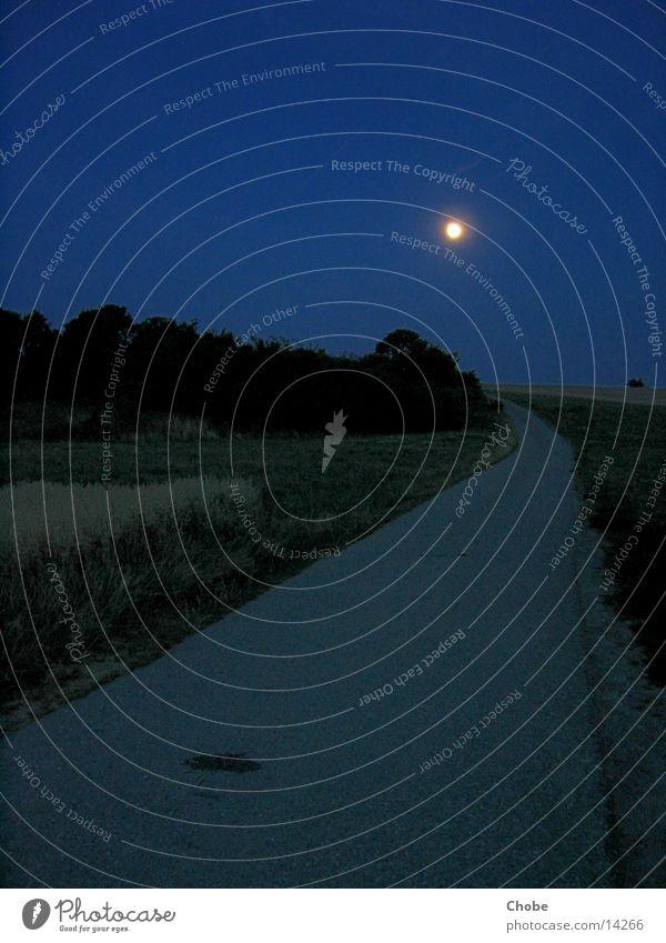 Vollmond Nacht Mondschein Baum Gras Wege & Pfade blau