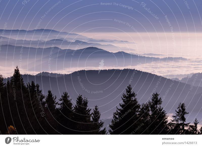 Am Rand des Waldes Ferien & Urlaub & Reisen Ausflug Ferne Freiheit Berge u. Gebirge wandern Umwelt Natur Landschaft Luft Wasser Himmel Wolken Klima Wetter Nebel