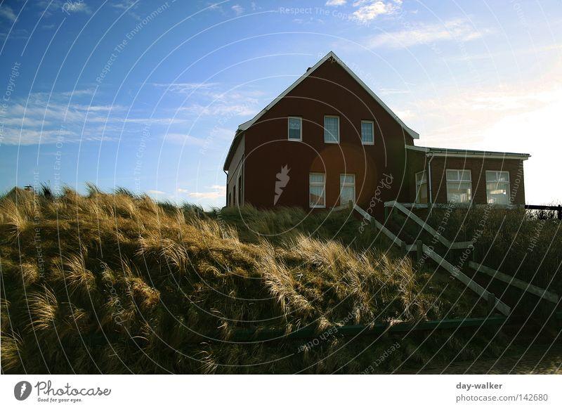 Frische Briese frisch Meer Strand Küste Gras Haus Wolken Ferienhaus Licht Abendsonne Himmel briese Wind Klima Nordsee Insel Natur Stranddüne Sand Treppe