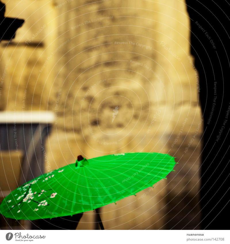 grün Sommer Blume Blüte Blühend Schutz Regenschirm Denkmal Schmuck Sonnenschirm Handwerk Schutzschild Ergänzung