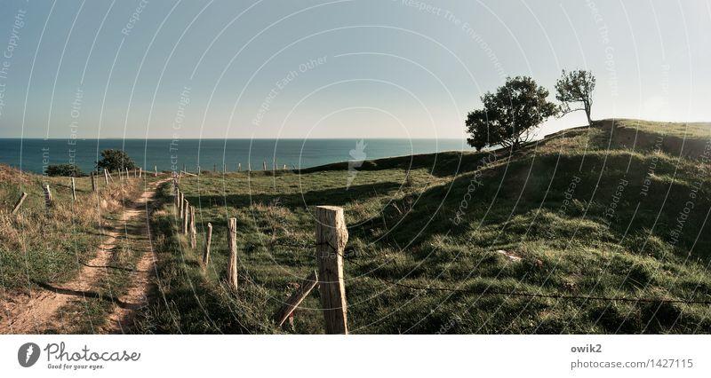 Bei Binz, Rügen Ferne Umwelt Natur Landschaft Pflanze Wolkenloser Himmel Horizont Klima Wetter Schönes Wetter Baum Gras Hügel Ostsee Insel Wege & Pfade Pfosten