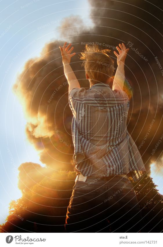 verloren Mensch Mann Natur Jugendliche Himmel Baum blau schwarz Wolken Wiese Feld Brand Trauer Rauch Typ Verzweiflung