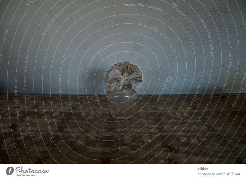 Natur alt weiß Blume Einsamkeit Traurigkeit Tod 1 grau braun Linie dreckig Glas leer Tisch Beton