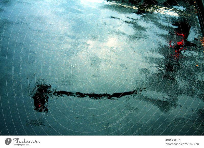 Nasse Ampel Verkehr Straßenverkehr Reflexion & Spiegelung Fahrbahn Asphalt nass Regen Herbst Pfütze Verkehrswege Straßennamenschild asfalt Niederschlag