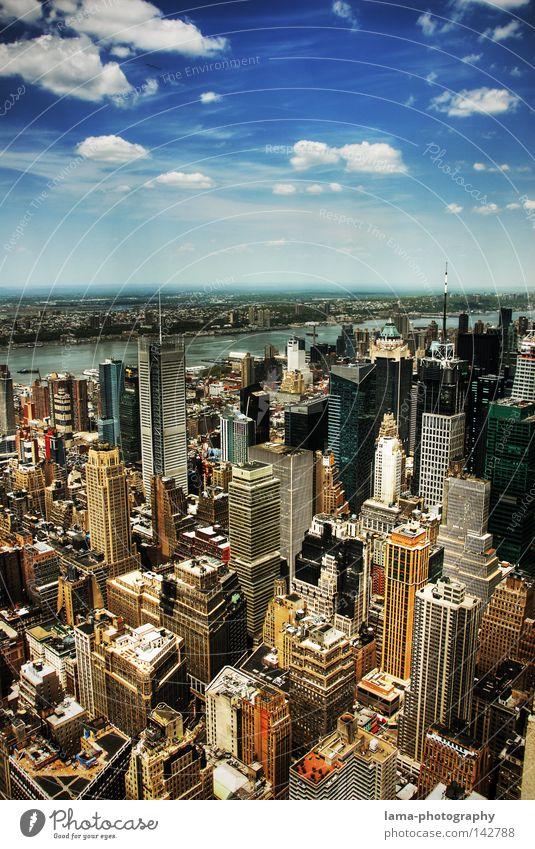 Like a bird... Himmel Stadt Haus Wolken Arbeit & Erwerbstätigkeit Business fliegen groß Hochhaus Brooklyn USA Fluss Bankgebäude Aussicht Amerika Skyline