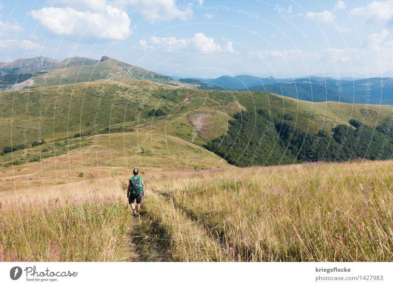 Der Wanderer Gesundheit Wohlgefühl ruhig Ferien & Urlaub & Reisen Abenteuer Ferne Freiheit Berge u. Gebirge wandern Natur Tier Erde Schönes Wetter Gras Wiese