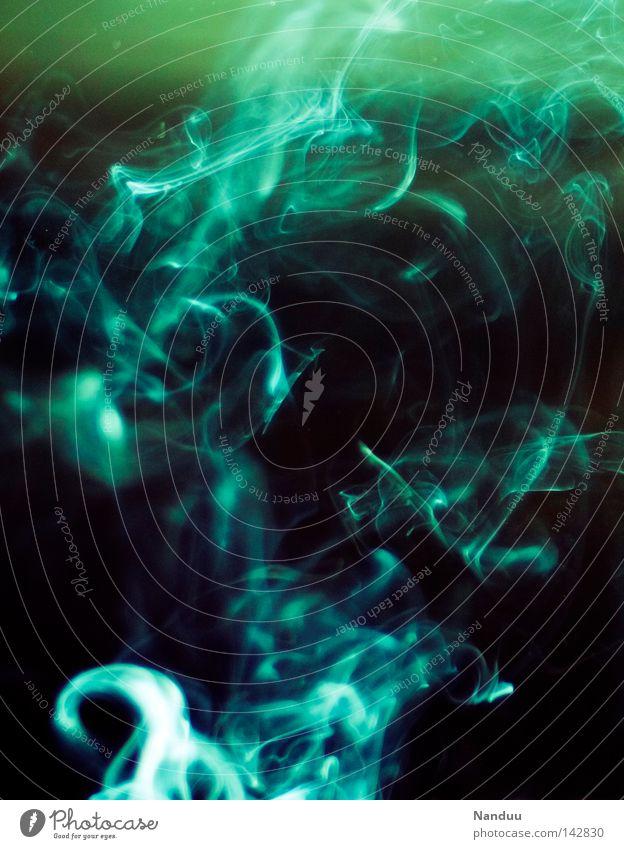 Schall und Rauch Zigarette Dunst Konzert Rauchen Tabakwaren Geruch zerbrechlich Strukturen & Formen blau grün brennen Rauchen verboten Nichtraucherschutz