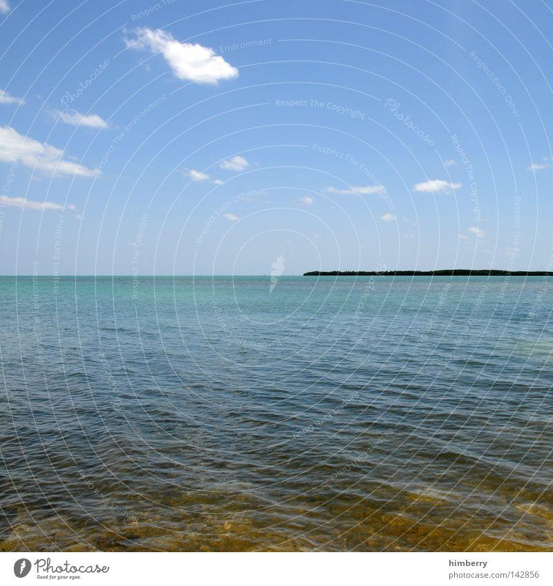 waterworld Wasser Ferien & Urlaub & Reisen Sommer Meer Erholung Wetter Horizont Hintergrundbild Insel USA türkis Schönes Wetter Amerika Paradies Blauer Himmel