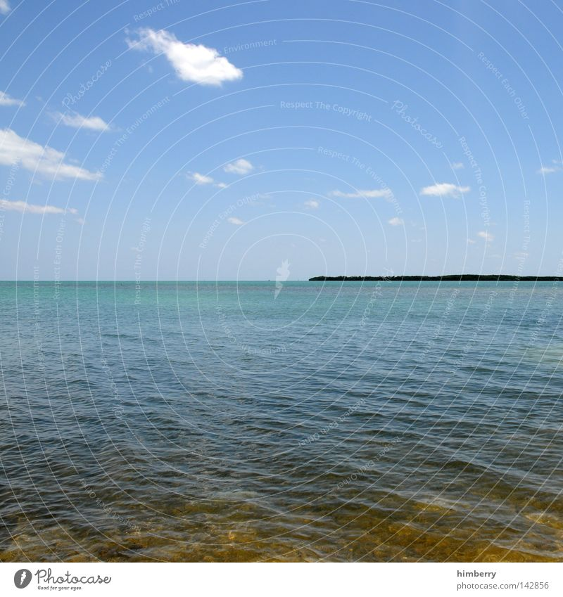 waterworld Wasser Ferien & Urlaub & Reisen Sommer Meer Erholung Wetter Horizont Hintergrundbild Insel USA türkis Schönes Wetter Amerika Paradies Blauer Himmel Florida
