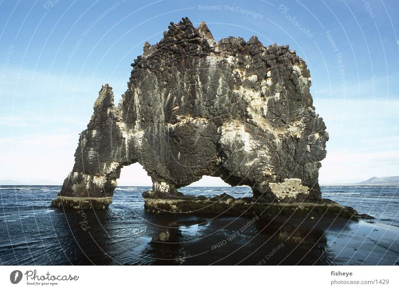 Hvítserkur Meer Stein Küste Felsen Island