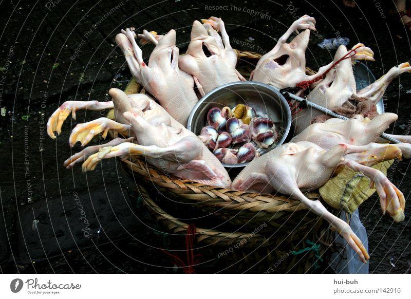 Hühnerparty Tod Beine Suppe Lebensmittel Herz dreckig Ernährung Hähnchen Reinigen Sauberkeit Kochen & Garen & Backen rein Gastronomie Vogel lecker