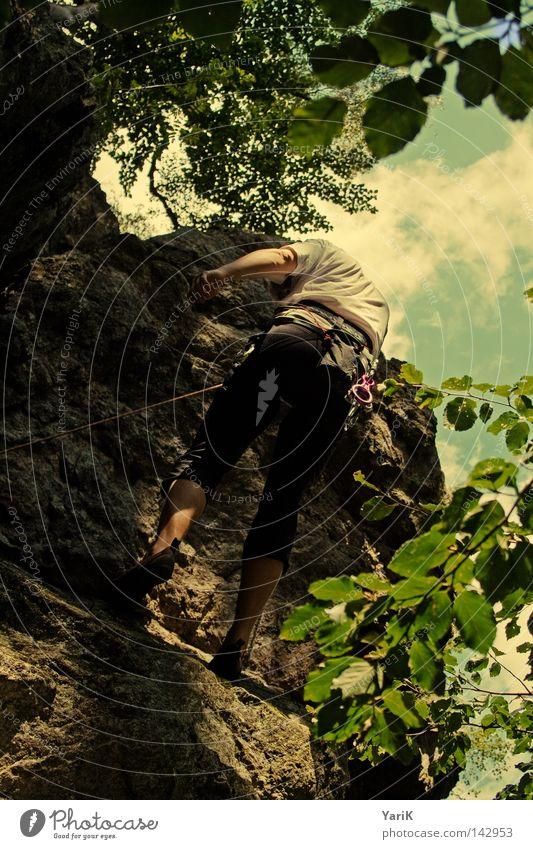 downhill II Mann Himmel Baum grün blau Blatt Wolken Sport oben Berge u. Gebirge Stein Wärme Beine Beine Arme Seil