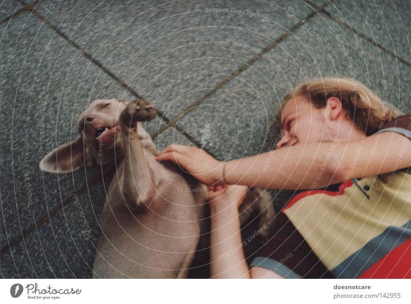 to romp about. Mann Freude Liebe Tier Spielen Hund Freundschaft blond Erwachsene analog niedlich genießen Säugetier Pfote Haustier gestreift